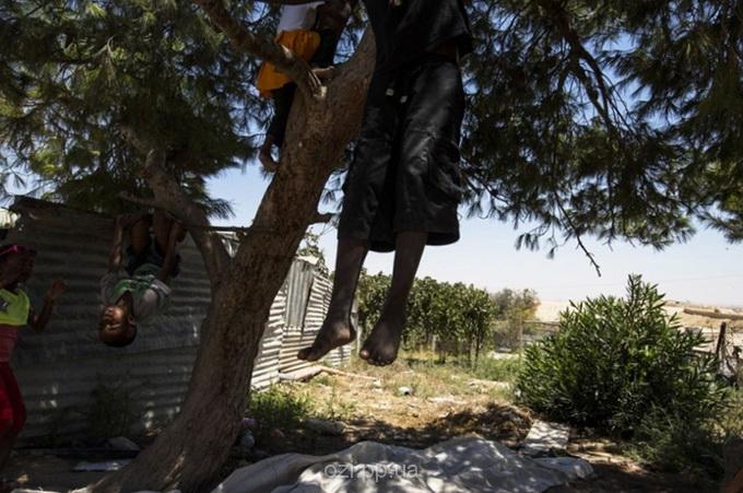 бедуїни в Ізраїлі