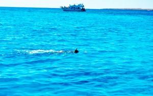 Червоне море навколо Єгипту