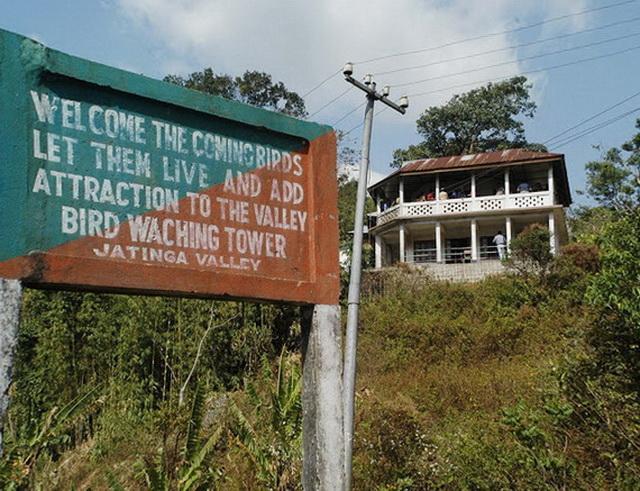 Долина Джатінга в Індії