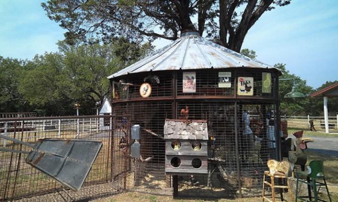 тур по курниках Техасу