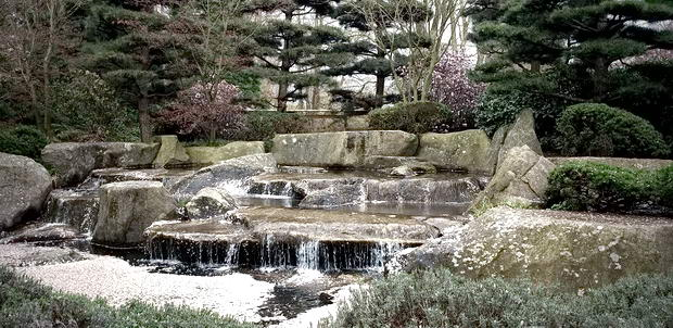 ботанічний сад Гамбурга