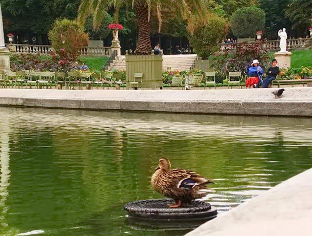 Королівський парк у Парижі
