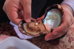 Новий атракціон ОАЕ - лов перлів!