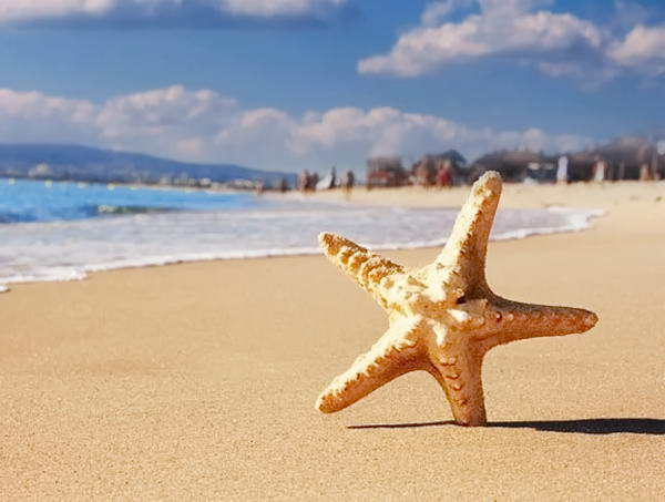 курорти Чорного моря Болгарії