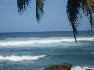 Незабутня екзотика Шрі-Ланки