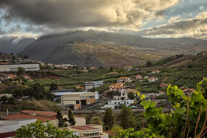 види острову Мадейра