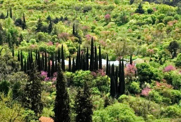 Тбілісі. Ботанічний сад