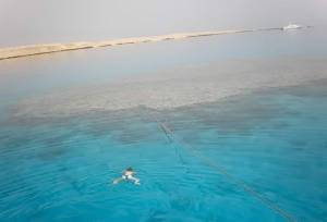 Дайвінг на Червоному морі в Єгипті