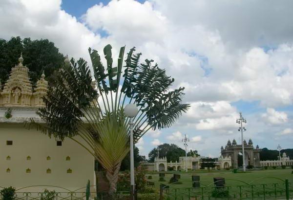 Палац Амба Вілас