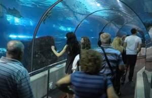 Океанаріум у Барселоні