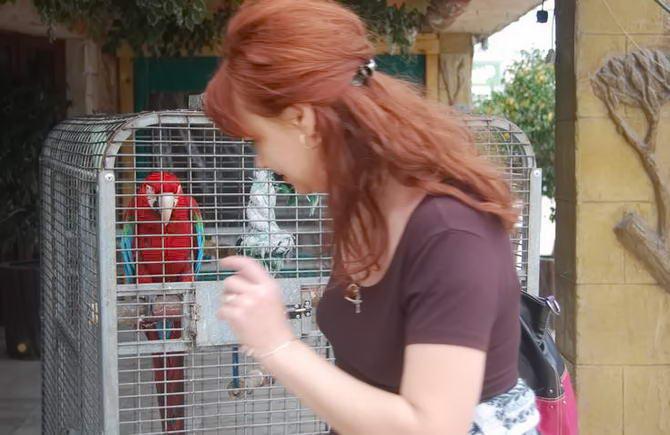 тропічний пташиний парк