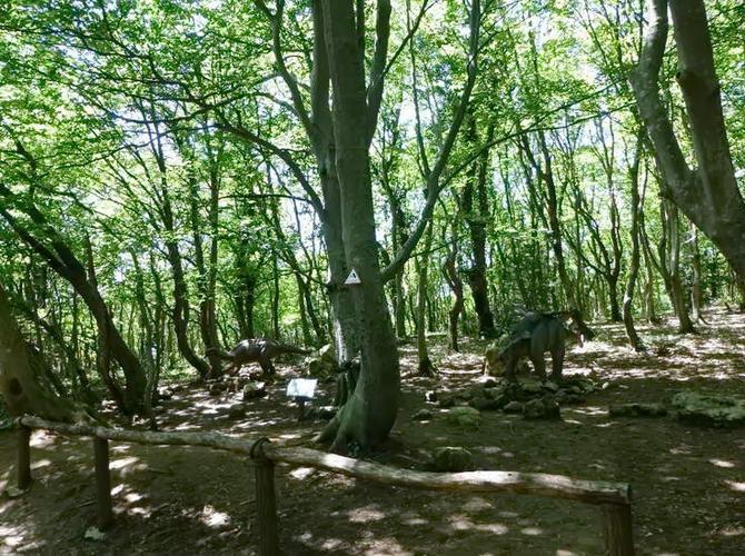 Колхідський ліс