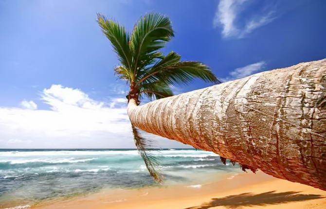 відпочинок на Шрі-Ланці