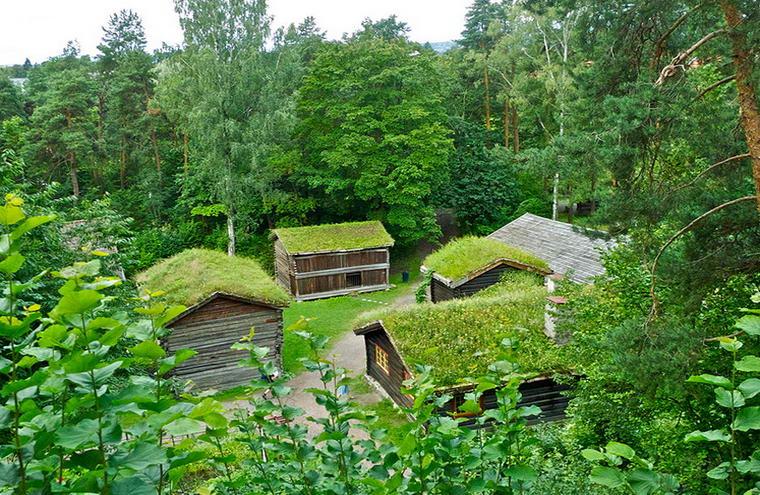 Постройки с крышами из травы