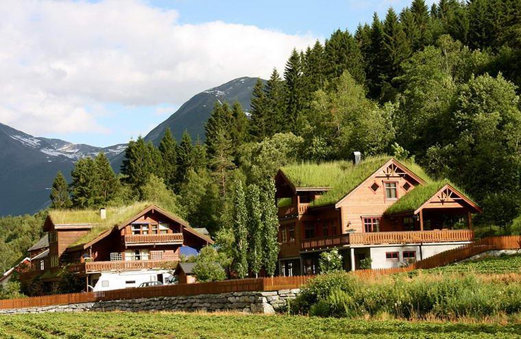 комплекс коттеджей с травяными крышами
