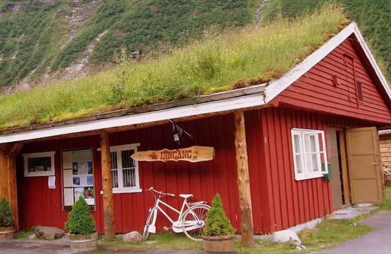Магазин с травяной крышей