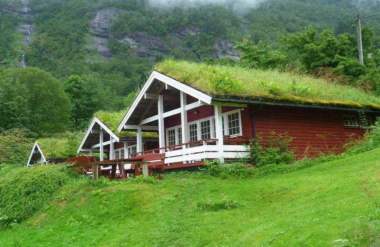 Современные постройки норвежцев с травяными крышами