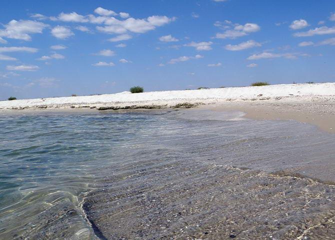 побережье острова Джарылгач