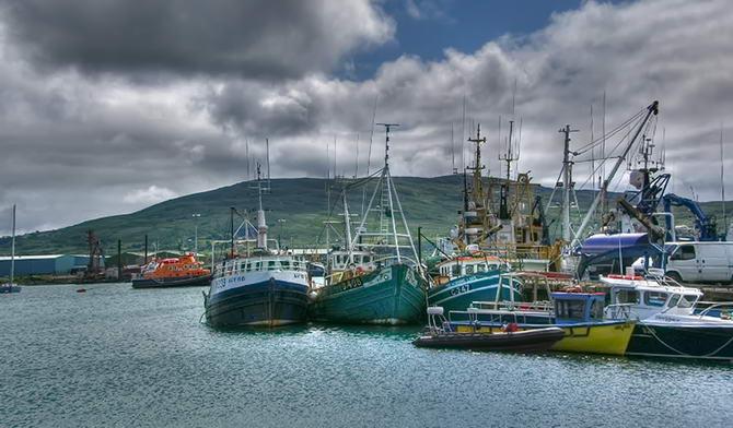 Ірландський порт