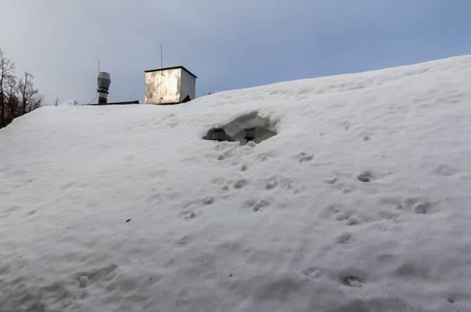ще одне снігове фото