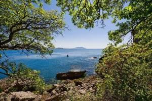 Відпочинок весною в Криму. Що може бути прекрасніше?