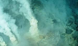 Жизнь под метаном или кто проживает на дне океана? Новости подводного мира