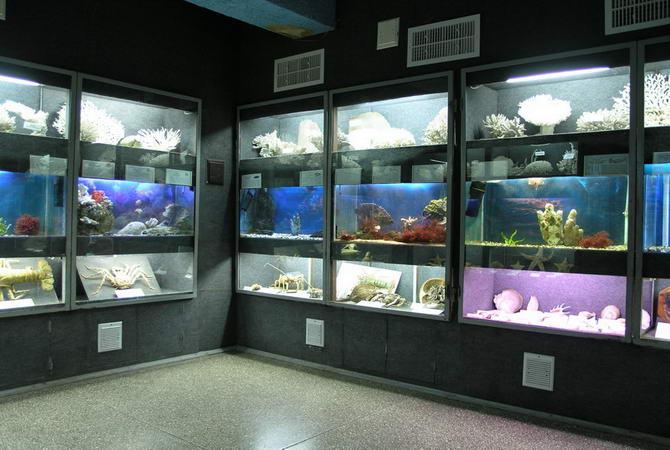 морський акваріум-музей в Севастополі