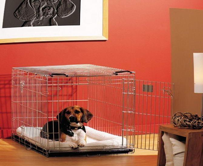 клітина для собаки