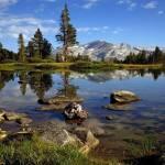 Грандиозный парк дикой природы недалеко от Голливуда