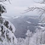 Тури в Карпати – відмінний відпочинок