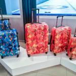 Вещи и чемоданы на колесах в интернет-магазинах со скидками и оптовой цене