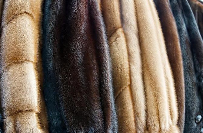 химчистка меховых изделий