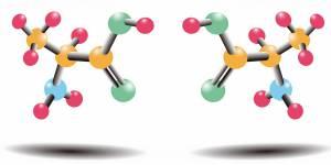 Амінокислоти: властивості, користь та шкода