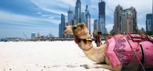 ОАЕ попередили туристів про ускладнення візових правил