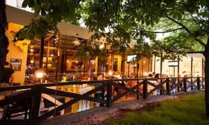 Посещение кафе Харьков: интересные встречи и активный отдых