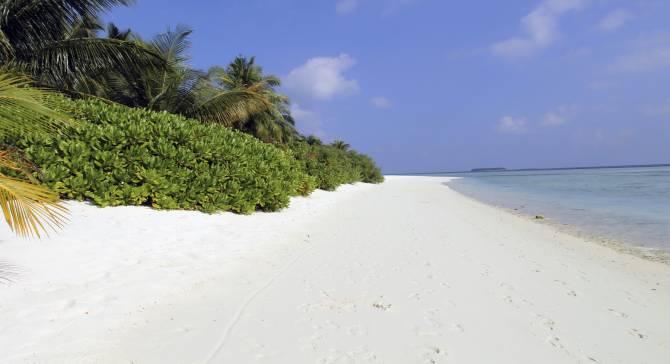 красота береговой линии на Мальдивах