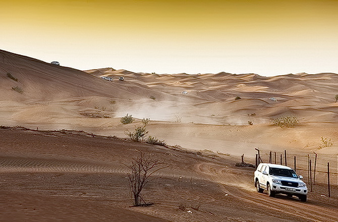 Сафарі по пустелі