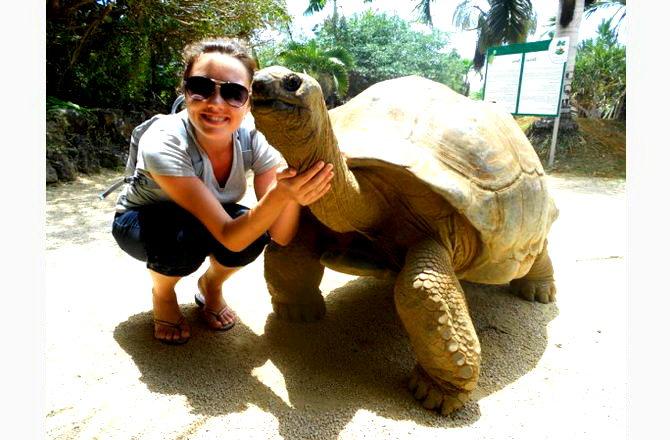 Найкрутіша черепаха у світі)
