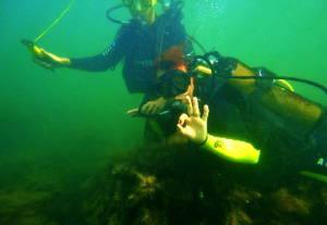 Дайвинг магазин «Акваланг» поможет погрузиться под воду