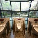 У Китаї для туристів створили програму для пошуку безкоштовних туалетів