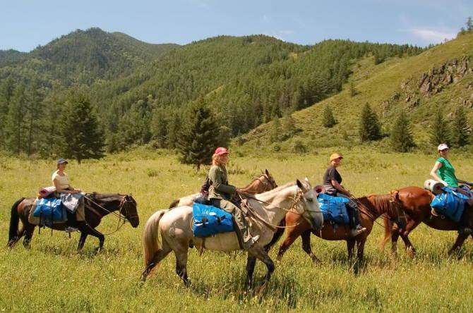 Подорож з кіньми