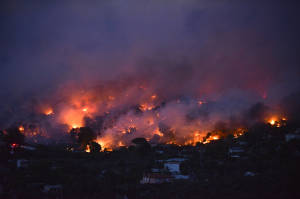 лісові пожежі на Мармара