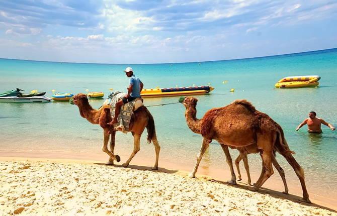 В Тунісі зростання турпотоку